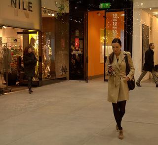 FL Consumer Shopper Monitor_v2.jpg