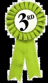 third-place-ribbon_edited.png