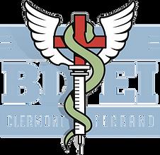 Logo_BDEI_rvb transparent.png