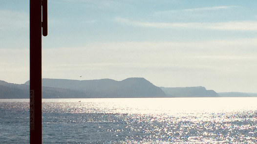 View of Lyme Bay