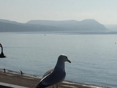Beautiful morning in Lyme Regis