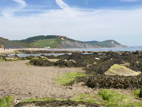 Walk the South West Coastal Path 🥾🥾