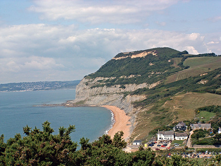 Spring Time on the Jurassic Coast