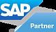 SAP PE Logo.png