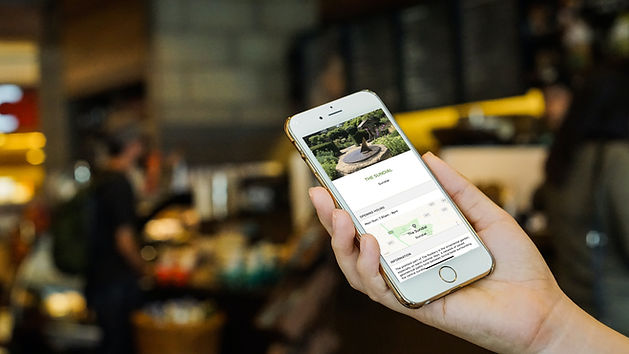 SavviVille lifestyle phone.jpg