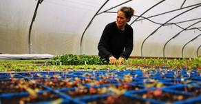 Oak Tree Organics April 2020