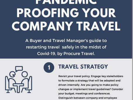A Buyers Guide to Pandemic Proofing Your Company Travel