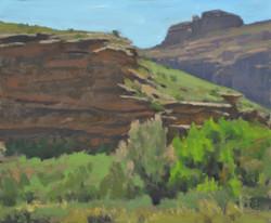 Along the Colorado