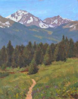 Reynolds Ranch Open Space