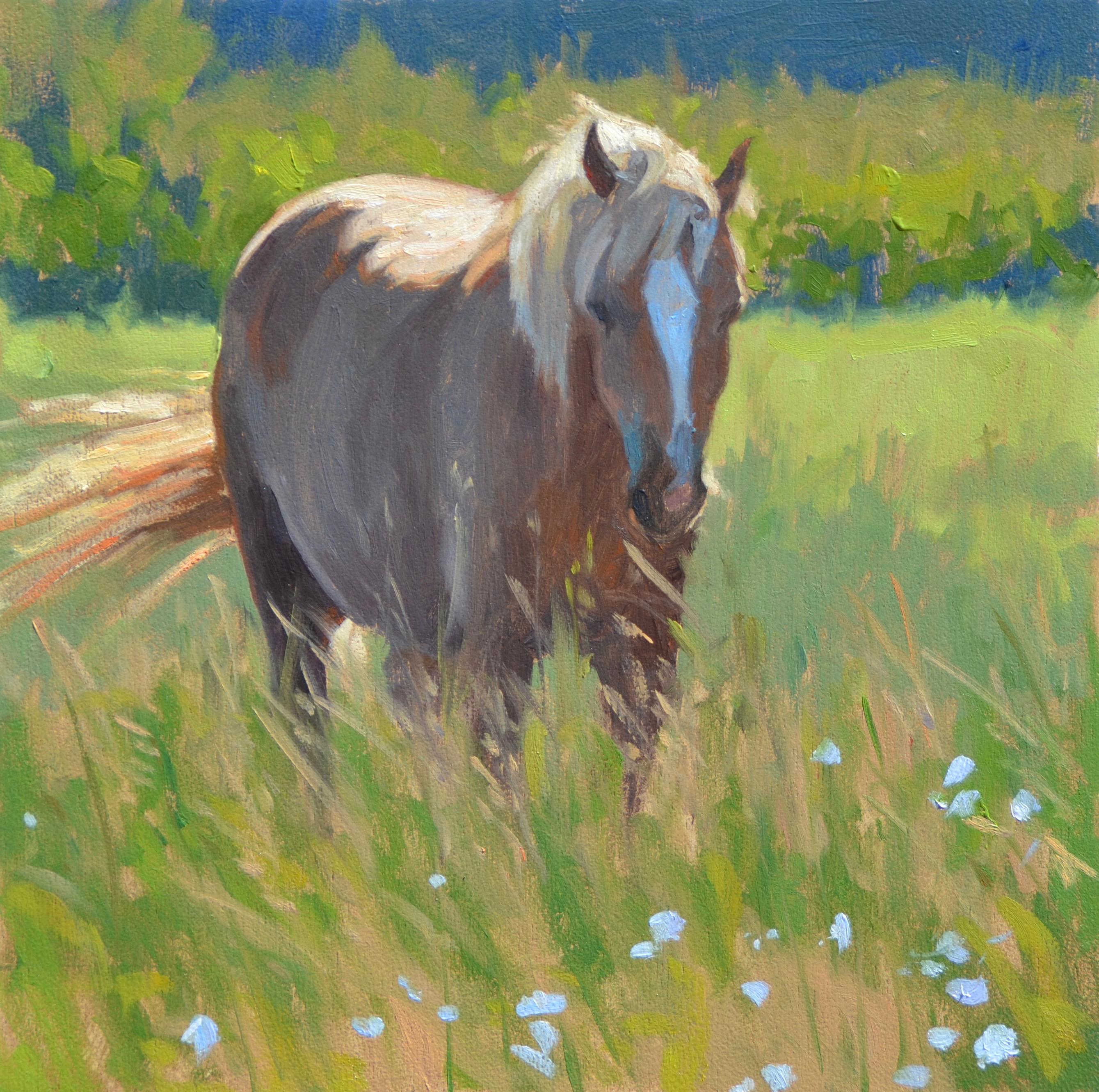 "oil painting, 10""x10"", a horse in"