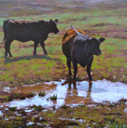 An oil painting of 2 cows