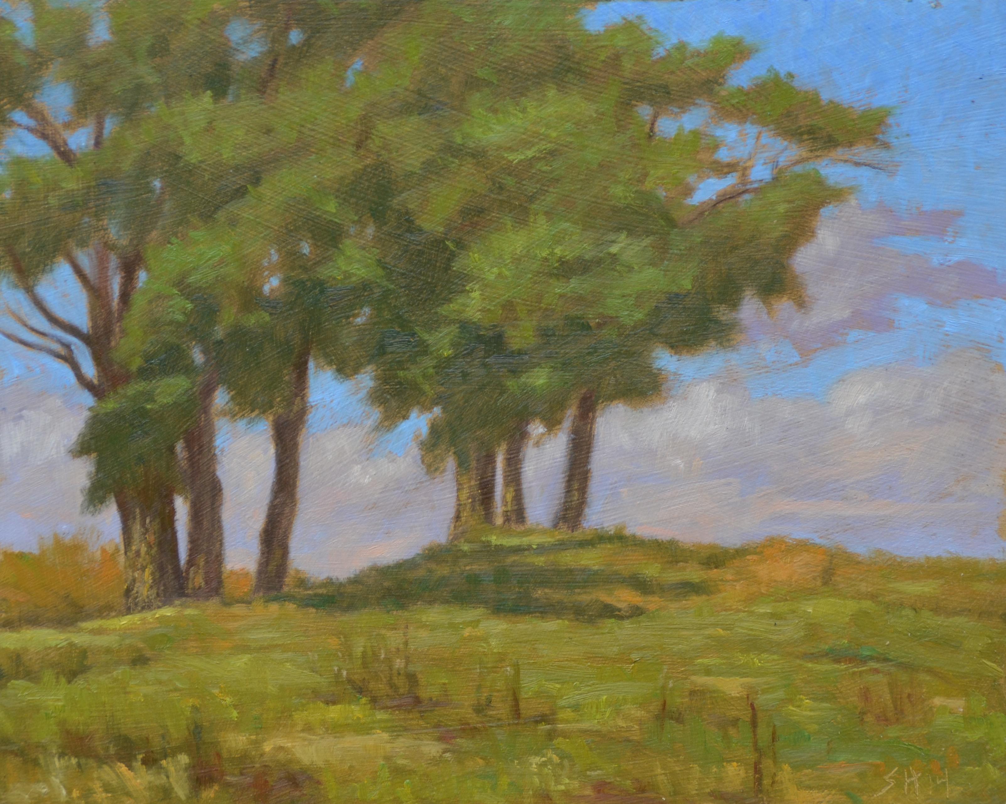 Tree Group, Lake Mesa