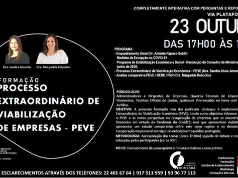 PROCESSO EXTRAORDINÁRIO DE VIABILIZAÇÃODE EMPRESAS - PEVE