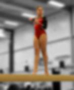Gymnast Floor