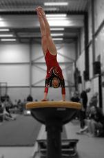 Gymnast Fay