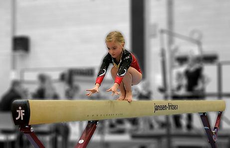 Gymnast Veerle