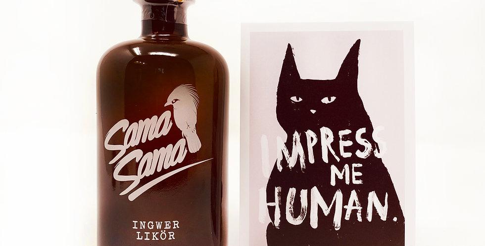 IMPRESS ME HUMAN
