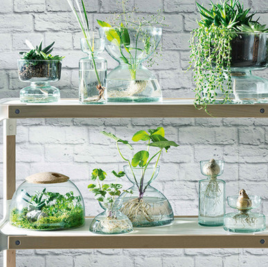 LSA International terrarium, £65: handmade from recycled glass with a cork lid