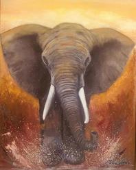 Elefante marchando en Sudáfrica