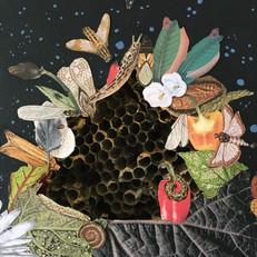 Hive (detail)