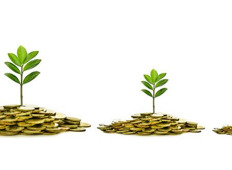 Organic vs. Paid