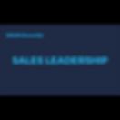 Sales Leadership.png