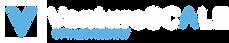 VentureSCALE logo