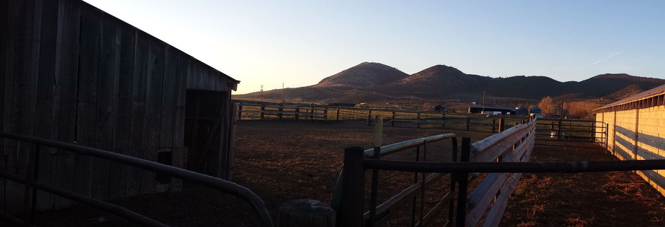Home at the 85 ranch