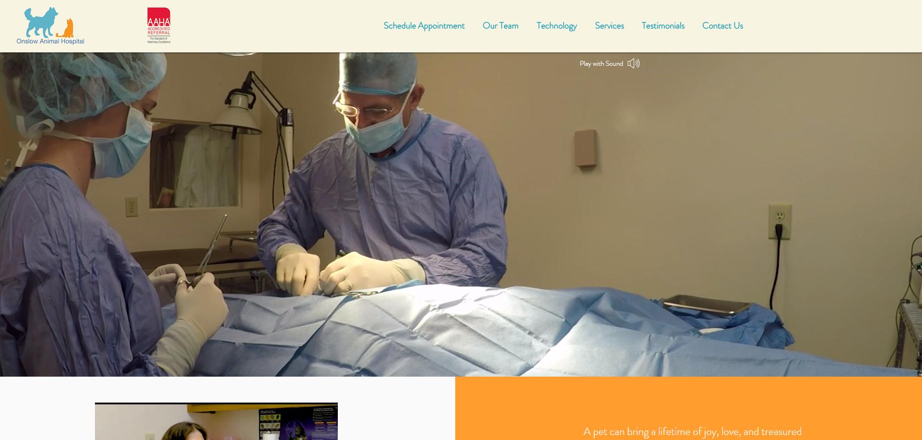 Website Design 2020 - Onslow Animal Hospital Jacksonville NC