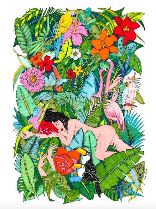Jungle 🇪🇸