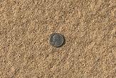 Bulk Sand close up