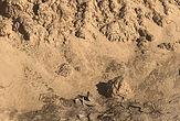 Bulk Topsoil close up