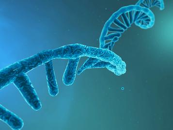 10+1 ερωτήσεις και απαντήσεις σχετικά με τα RNA εμβόλια κατά του κορωνοïού