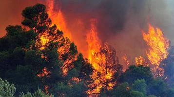 H Ασφάλιση Κατοικίας καλύπτει από πυρκαγιές δασών;