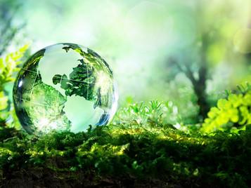INTERAMERICAN: Προγράμματα αστικής περιβαλλοντικής ευθύνης επιχειρήσεων - Green Line