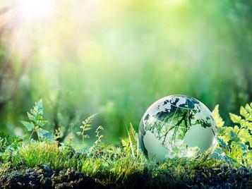 Αστική ευθύνη & επαναφορά περιβάλλοντος συνεπεία συλλογής και μεταφοράς μη επικίνδυνων αποβλήτων