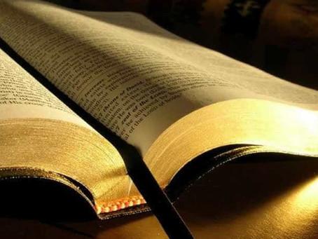 Noemia Rocha destaca Dia da Bíblia