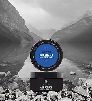 Scent Free Hair Pomade.png