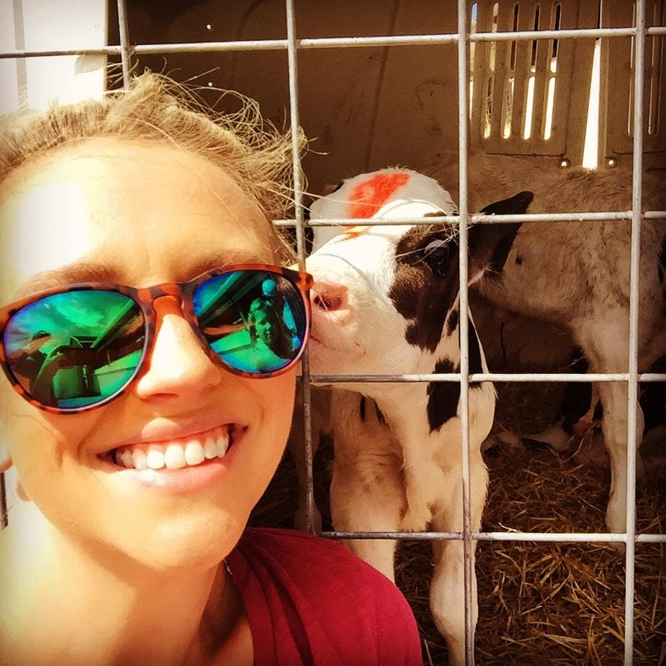 The author smiling with a newborn baby calf that is sniffing her from within his cage at a Concentrated Animal Feeding Operation (CAFO), A CAFO is a large-scale industrial agricultural facility that raises animals at high-density for the consumption of meat or milk.