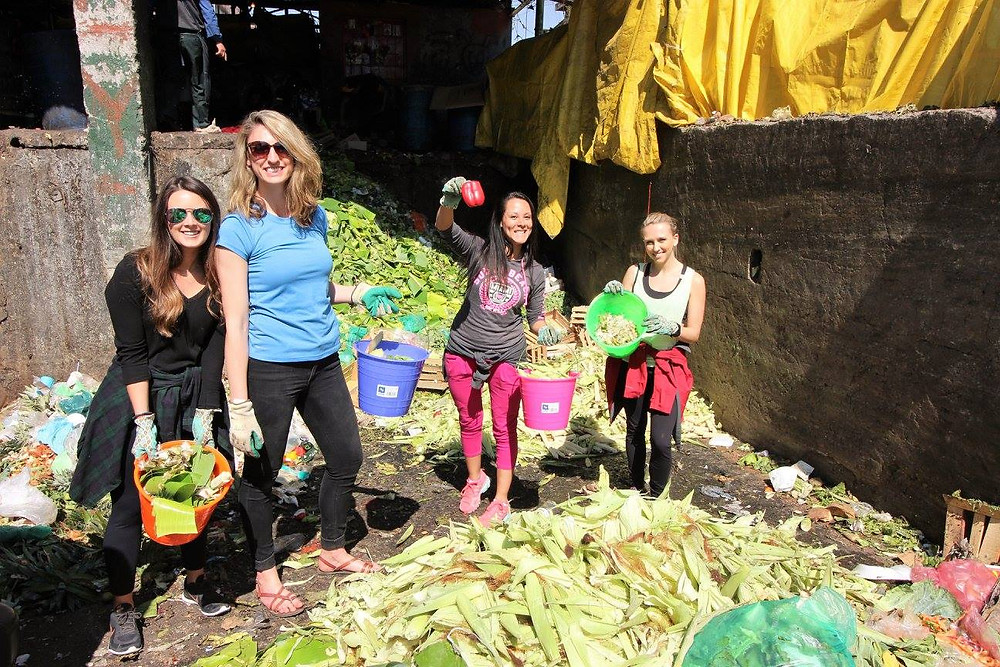 Volunteering for ATEA to create a compost bin https://www.instagram.com/ateacdmx/
