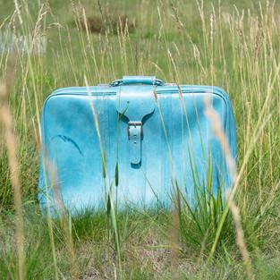 Vintage Blue Honeymoon Case
