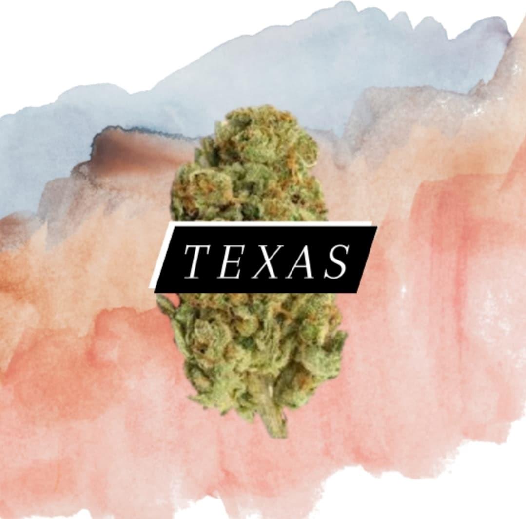 Texas Cannabis Today