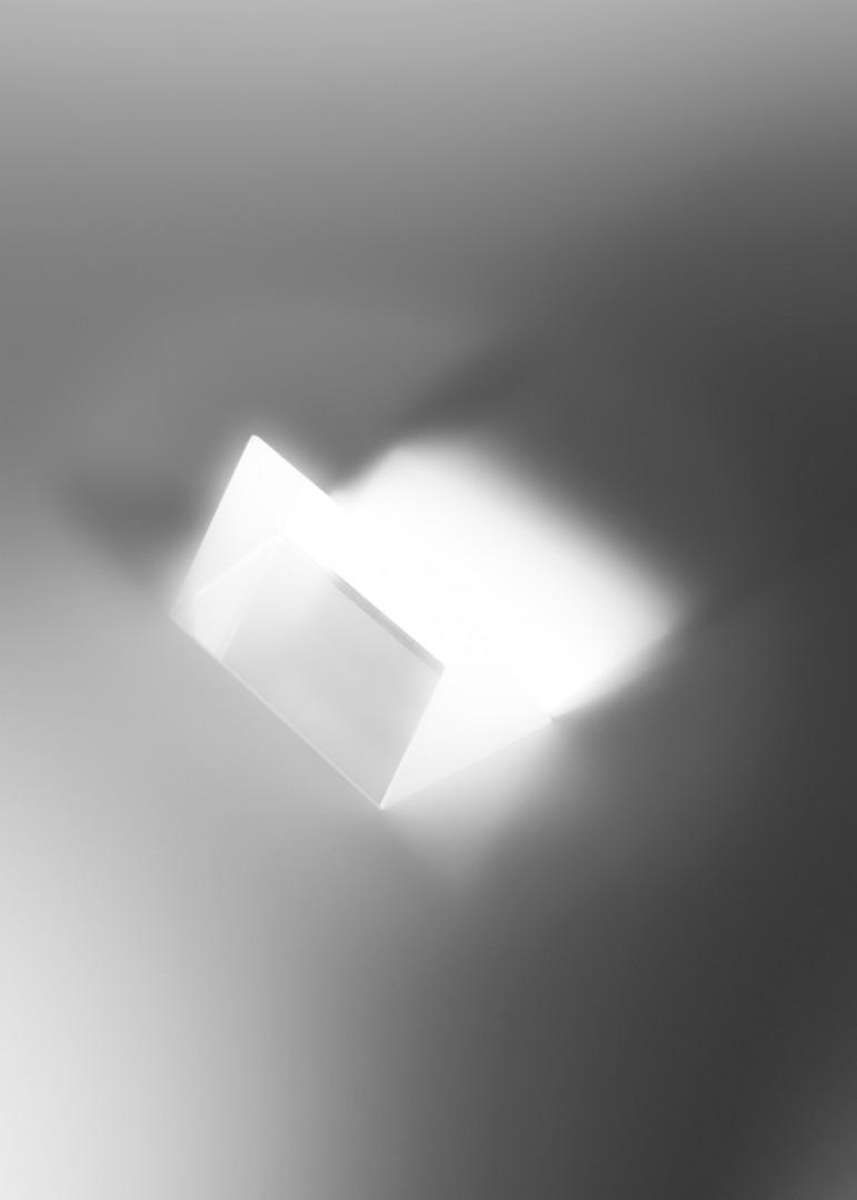 WIMP-6.jpg
