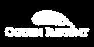 OI logo WHITE.png