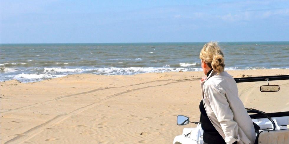 Dagliefste strandwandeling