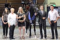 Shayan de Magnifique - Best Austrian Stallion Wels 2018
