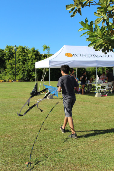 3rd Annual Kite Flying Event