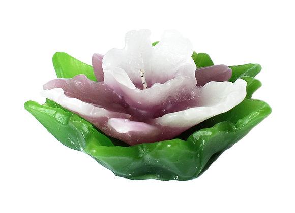 Vela Flor Orquídea