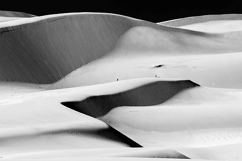 Meeting on a Dune