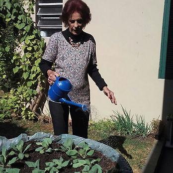 Nossa horta sendo cuidada pela diva Odet
